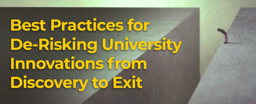 Best Practices for De-Risking University Innovations from Discovery to Exit
