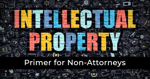 Intellectual Property Primer for Non-Attorneys