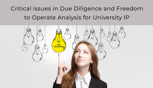 Critical Issues in Due Diligence and Freedom to Operate Analysis for University IP